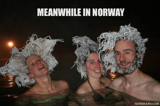 norskarv_120